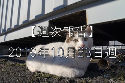 20191028_japan