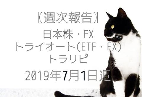 20190701_japan