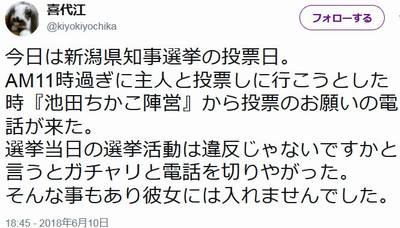 池田ちかこ 不正選挙