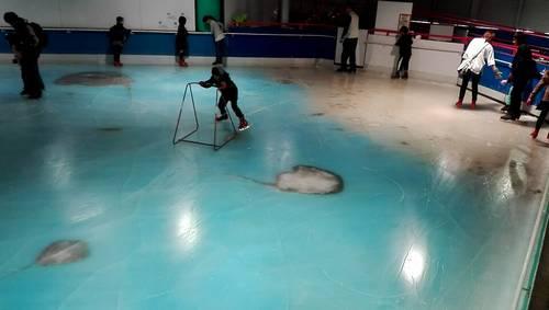 スペースワールド魚スケートリンク2