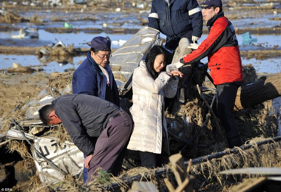 スクールバスの残骸に閉じ込められた娘の死体を撫でる両親(宮城県山元町)2