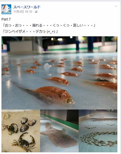 スペースワールド魚スケートリンク6