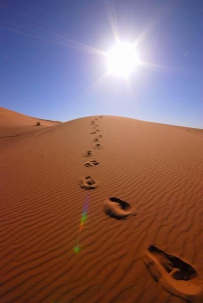 イラク砂漠