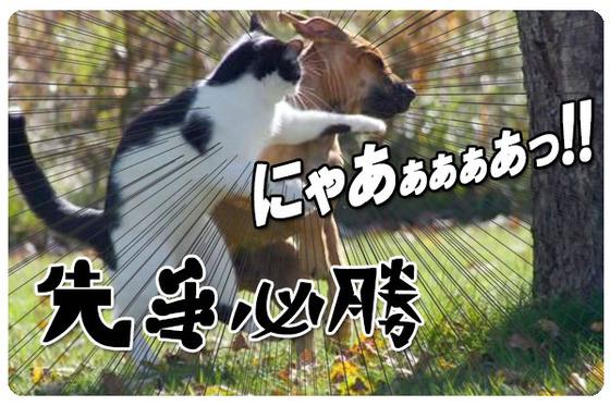 キャバクラ-求人-大阪-ミナミ-北新地