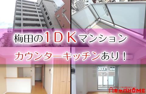 梅田1DK カウンターキッチンマンション
