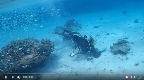 那覇市ダイビングSNSインスタ映え画像動画を投稿アップできるダイビングショップ