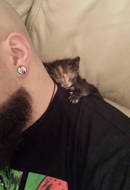 【安心と信頼の○ゲ】 未熟児だったゲイリーちゃんが大好きなのは、猫の妹と人間のパパ!