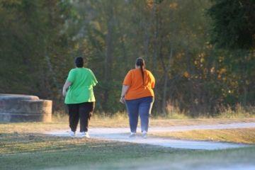 学生デブって一日8時間くらい毎日歩いたら1ヶ月で平均体重になるだろ