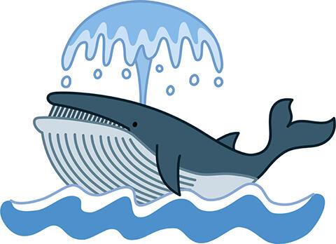 【画像あり】横須賀にクジラのご遺体が漂着wwwwwwww