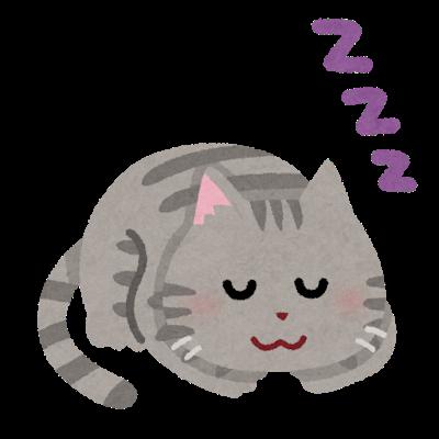 猫ってなんで寝てばっかりなの?