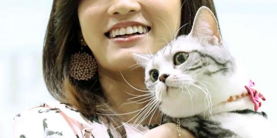 【芸能】前田敦子 第3回インターペットアワード受賞 2匹のネコと暮らしてます