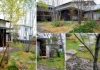 西田原の庭