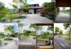 神戸町の家 更屋敷の庭