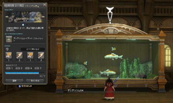 銅魚+カラードカープ