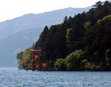 箱根神社鳥居1