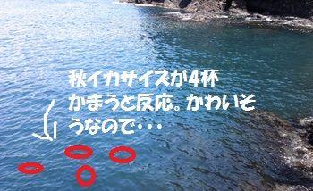 NCM_0192_3