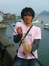 shinpei2