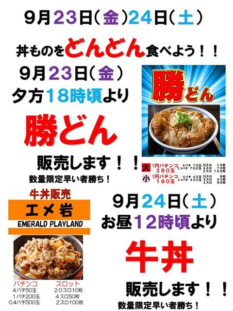 勝どん&牛丼