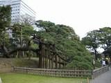 江戸ツアー 059