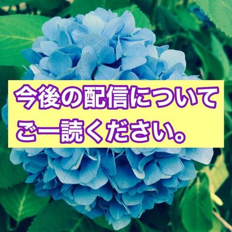 S__81723426