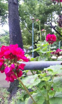 小川 エリ的NO MUSIC! NO LIFE。-100511_0846~01.jpg