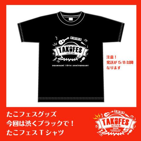 たこフェスTシャツ1