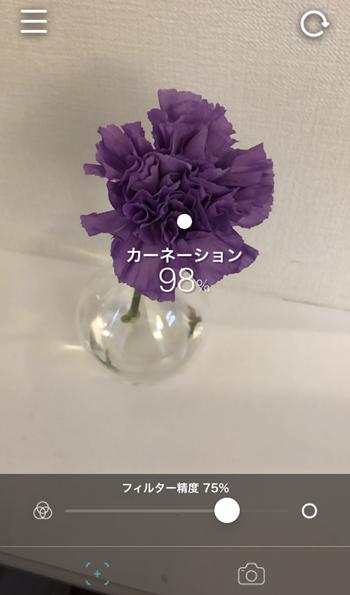 IMG_1390(1)