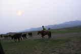 モンゴル1日目・遊牧民