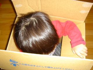 箱に入る雅空