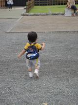 熊本城 歩き回る
