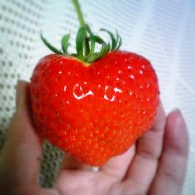 ハート型のイチゴ