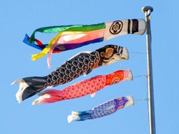 鯉のぼりの家紋