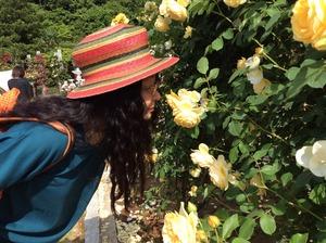 20150521花の匂い