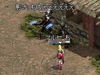 b081f128.jpg