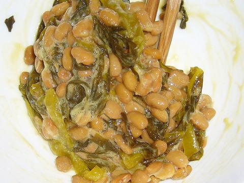 納豆に高菜漬け感覚003