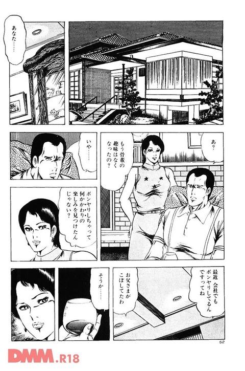エロ漫画 (13)