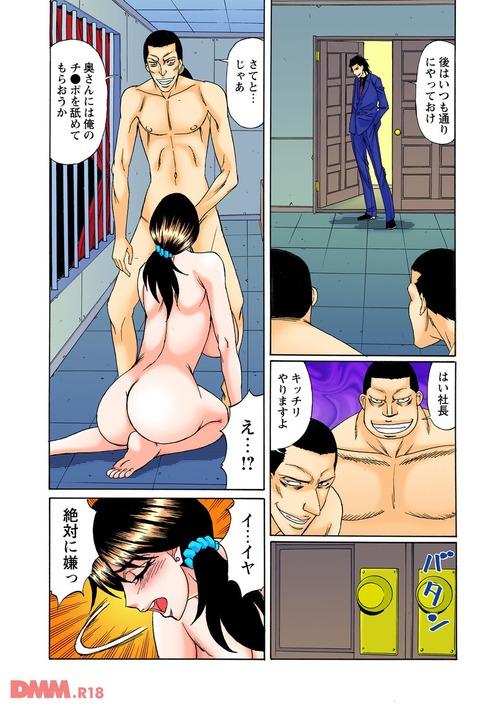 エロ漫画 (22)