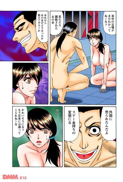 エロ漫画 (23)
