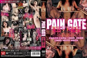 PAIN GATE REVERSI リバーシ (1)