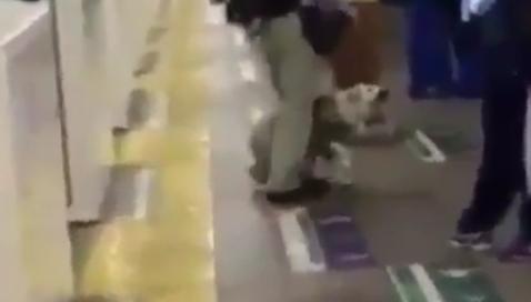 【胸糞】目が見えない人がパートナーである盲導犬にキックする動画が拡散され、話題に!