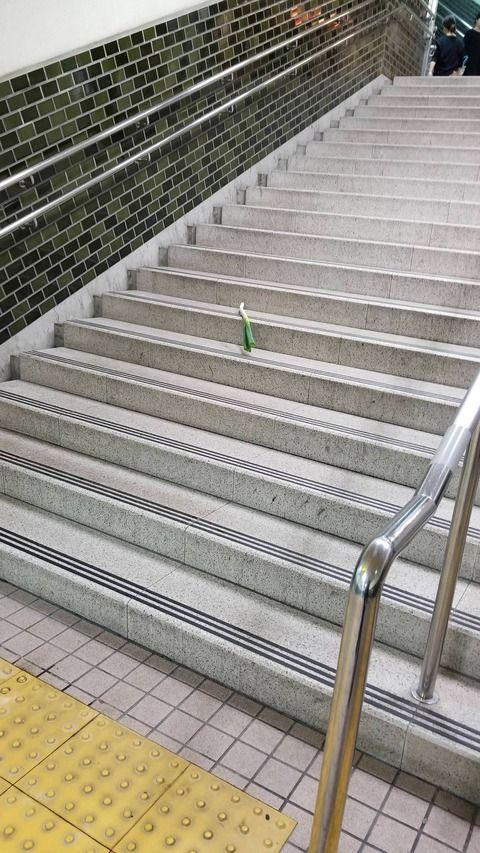 駅の階段にネギ落ちてるんやが…