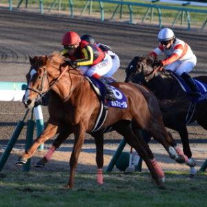 【競馬】実際のところ、今のクリンチャーって過去の馬でいうとどのぐらいの強さなの?