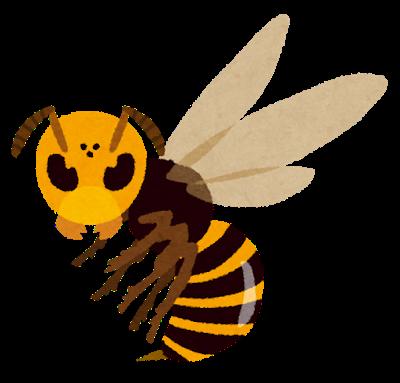 アメリカ人「日本のオオスズメバチ使って害虫駆除したろw」 → 結果…