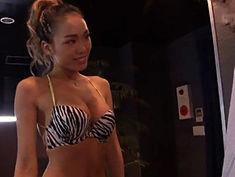 ギャル動画 - 【藤本紫媛】こっそりとフェラでスッキリさせてくれるガールズバー