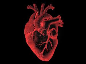 """【超!閲覧注意】心臓が """"一瞬で"""" 人間の体から外に出た結果・・・(動画あり)"""