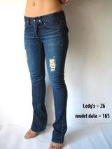 Ledy's_f_model