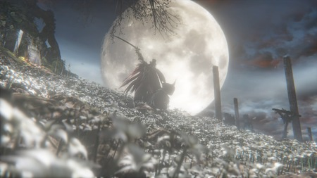 Bloodborne® The Old Hunters Edition_20160408030318