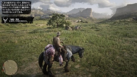 Red Dead Redemption 2_20181029065952