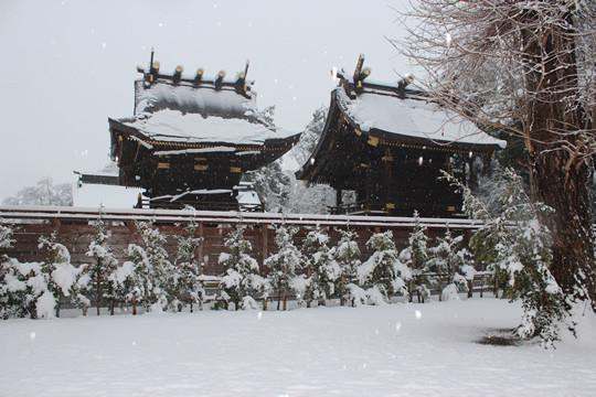 大雪の日の鷲宮神社本殿を後ろから