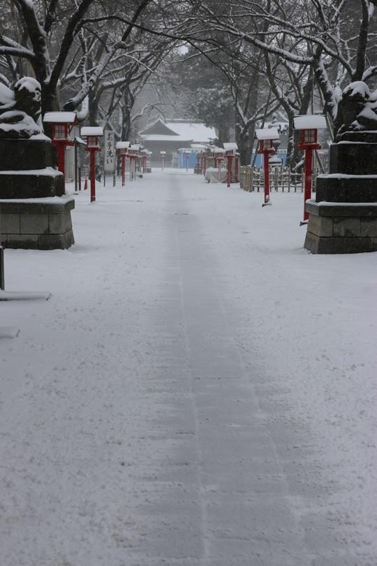雪の鷲宮神社参道